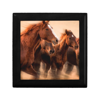 Running horses, blur and flying manes gift box