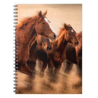 Running horses, blur and flying manes notebooks