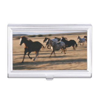 Running Horses Business Card Holder