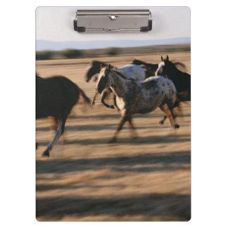 Running Horses Clipboard