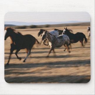 Running Horses Mouse Mat