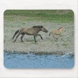 running horses mouse mats