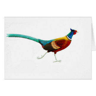 Running Male Ringneck Pheasant Card