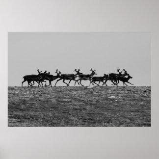 Running Reindeer Poster