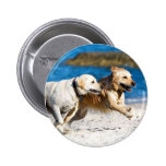 Running Retrievers at the Beach 6 Cm Round Badge