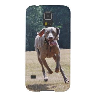 Running Weimeraner Galaxy S5 Cases