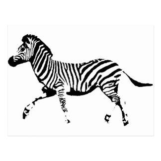 Running Zebra Postcard