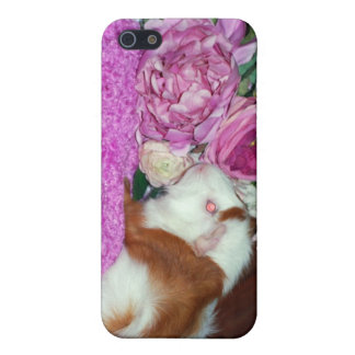 Rupert and Roses - Guinea Pig iPhone 5/5S Cases