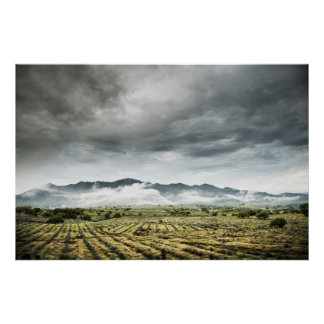Rural Crop Fields Under Cloudy Sky Poster