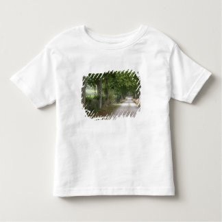 Rural dirt country road near the town of toddler T-Shirt