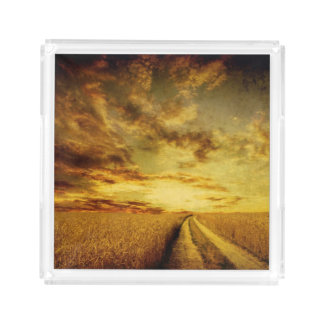 Rural dirt road through the field acrylic tray