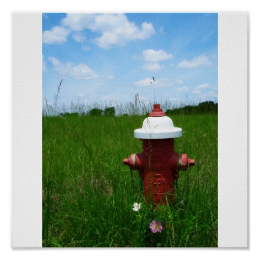 Rural Fire Hydrant Poster