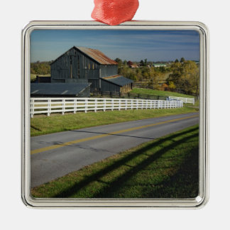 Rural road through Bluegrass region of 2 Christmas Ornament