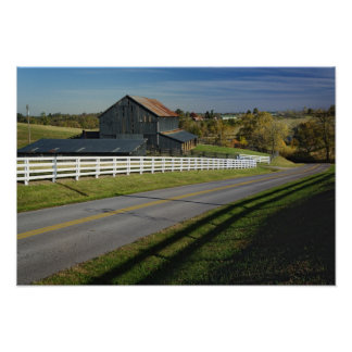 Rural road through Bluegrass region of 2 Posters
