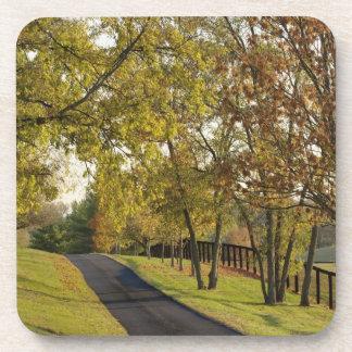 Rural road through Bluegrass region of Kentucky 2 Drink Coaster