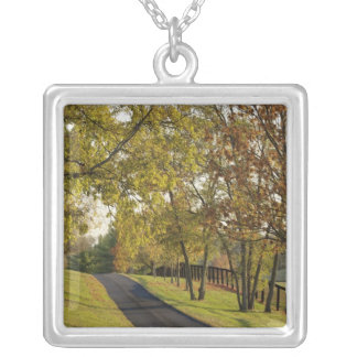 Rural road through Bluegrass region of Kentucky 2 Silver Plated Necklace