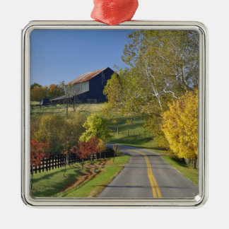Rural road through Bluegrass region of Kentucky Christmas Ornament