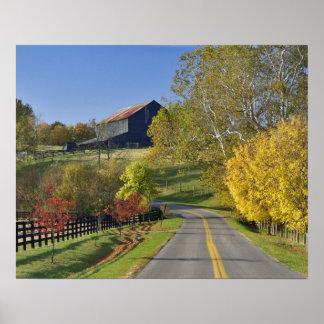 Rural road through Bluegrass region of Kentucky Poster