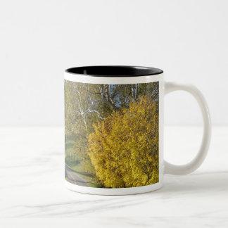 Rural road through Bluegrass region of Kentucky Two-Tone Coffee Mug