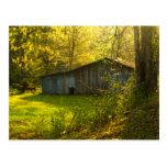 Rural Tennessee Spring Morning Light Postcard