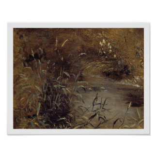 Rushes by a Pool c 1821 oil on paper on board Poster