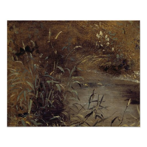 Rushes by a Pool, c.1821 (oil on paper on board) Posters