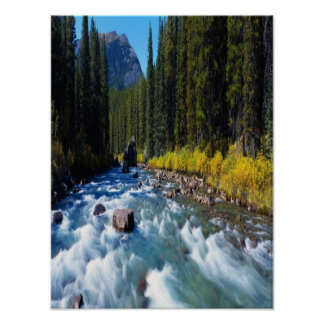 Rushing Maligne River on canvas Poster