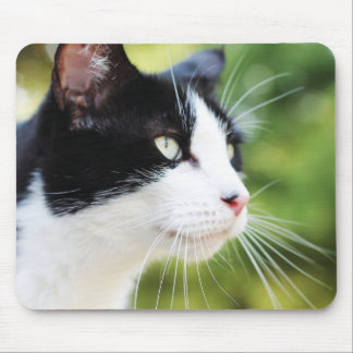 Russell 1 mousepad