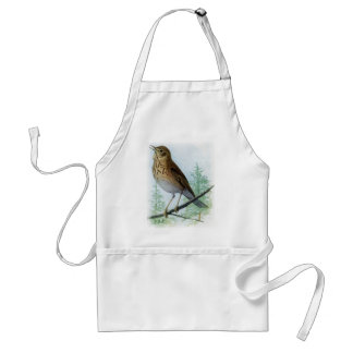 Russet-backed Thrush Aprons