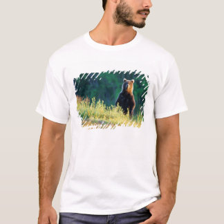 Russia, Kamchatka, grizzly of Kroska T-Shirt