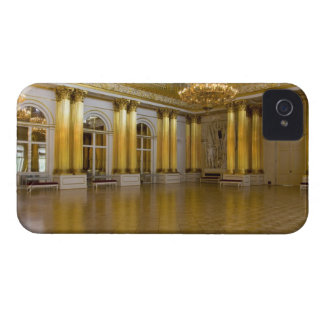 Russia, St. Petersburg, The Hermitage (aka 3 iPhone 4 Case-Mate Case