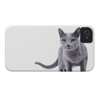 Russian Blue Cat iPhone 4 Covers