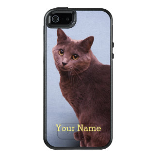 Russian Blue Cat Looking OtterBox iPhone 5/5s/SE Case