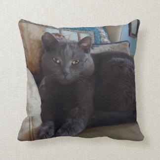 Russian Blue Cushion