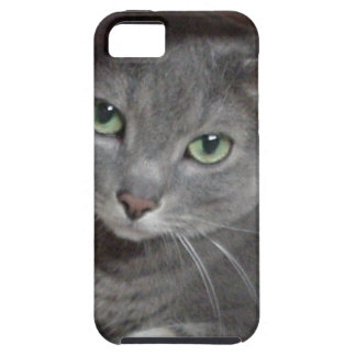 Russian Blue Gray Cat iPhone 5 Case