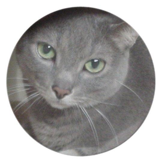Russian Blue Grey Cat Plate