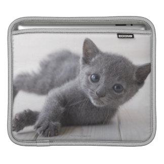 Russian Blue Kitten iPad Sleeve