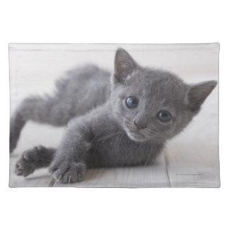 Russian Blue Kitten Placemat