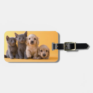 Russian Blue Kittens And Dachshund Puppies Luggage Tag