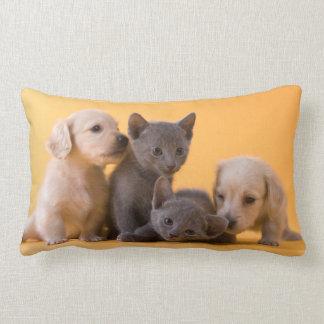 Russian Blue Kittens & Dachshund Puppies Lumbar Cushion