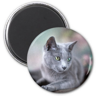 Russian Blue Magnet