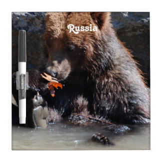 Russian Brown Bear Dry-Erase Whiteboard