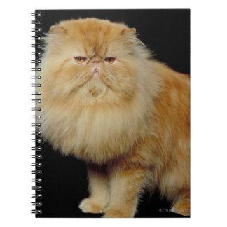 Russian Long Hair Cat Notebook