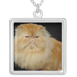 Russian Long Hair Cat Silver Plated Necklace