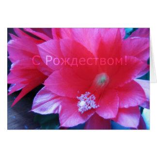 Russian Merry Christmas Card, Christmas Cactus Card