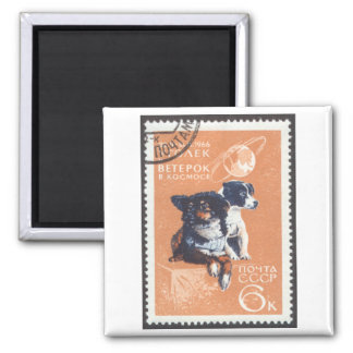 Russian Space Dogs 1966 Cosmos 110 Square Magnet