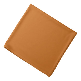 Rusted Burnt Orange Bandana
