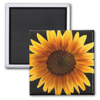 Rustic Autumn Sunflower Magnet