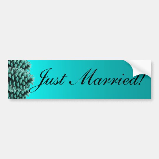 Rustic blue pine cone just married bumpersticker bumper sticker