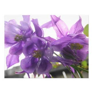 rustic bright vibrant purple beauty photo print